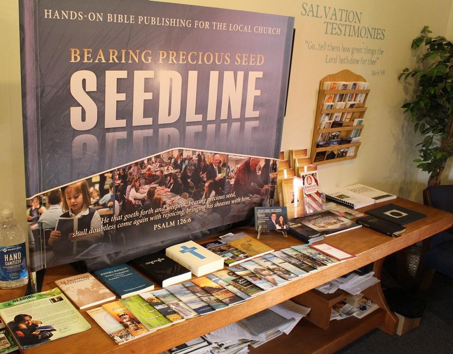 Seedline (14)
